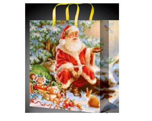 Красивый новогодний пакет с Сантой