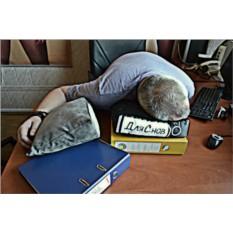Подушка в виде офисной папки Для снов