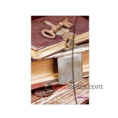 Записная книжка Antique Books A6 от teNeues Magneto