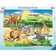 Пазл Животный мир Африки от Ravensburger