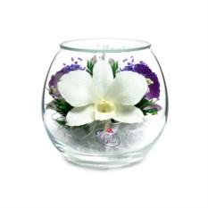 Композиция из натуральных орхидей в вазе