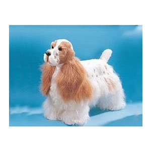 Собака XL Коккер Спаниель