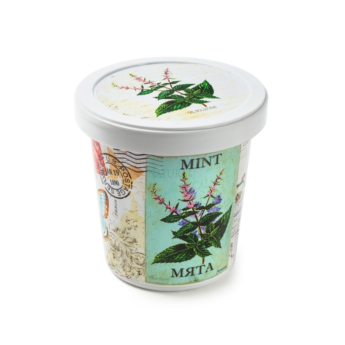 Набор для выращивания Мята