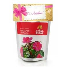 Набор для выращивания растения Бальзамин милашка