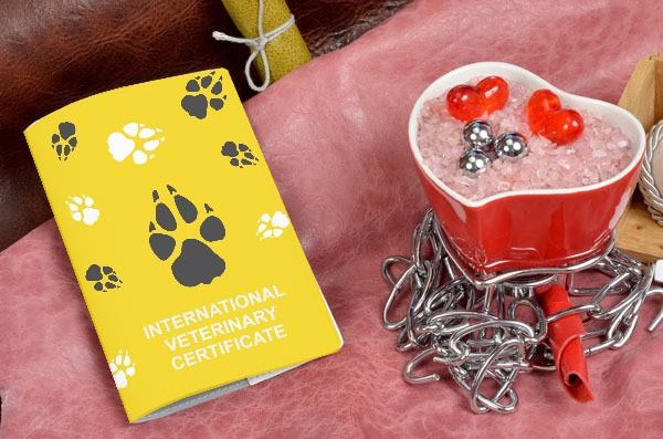 Кожаная обложка для ветеринарного паспорта IVC