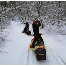 Катание на 2-местном снегоходе для двоих