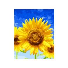 Картины по номерам «Подсолнухи и синее небо»