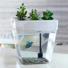 Домашняя акваферма для рыбок и растений Gold Fish «AquaFarm»