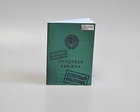 Блокнот «Трудовая книжка»