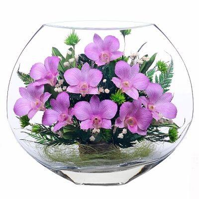 Цветы в стекле. Композиция из орхидей