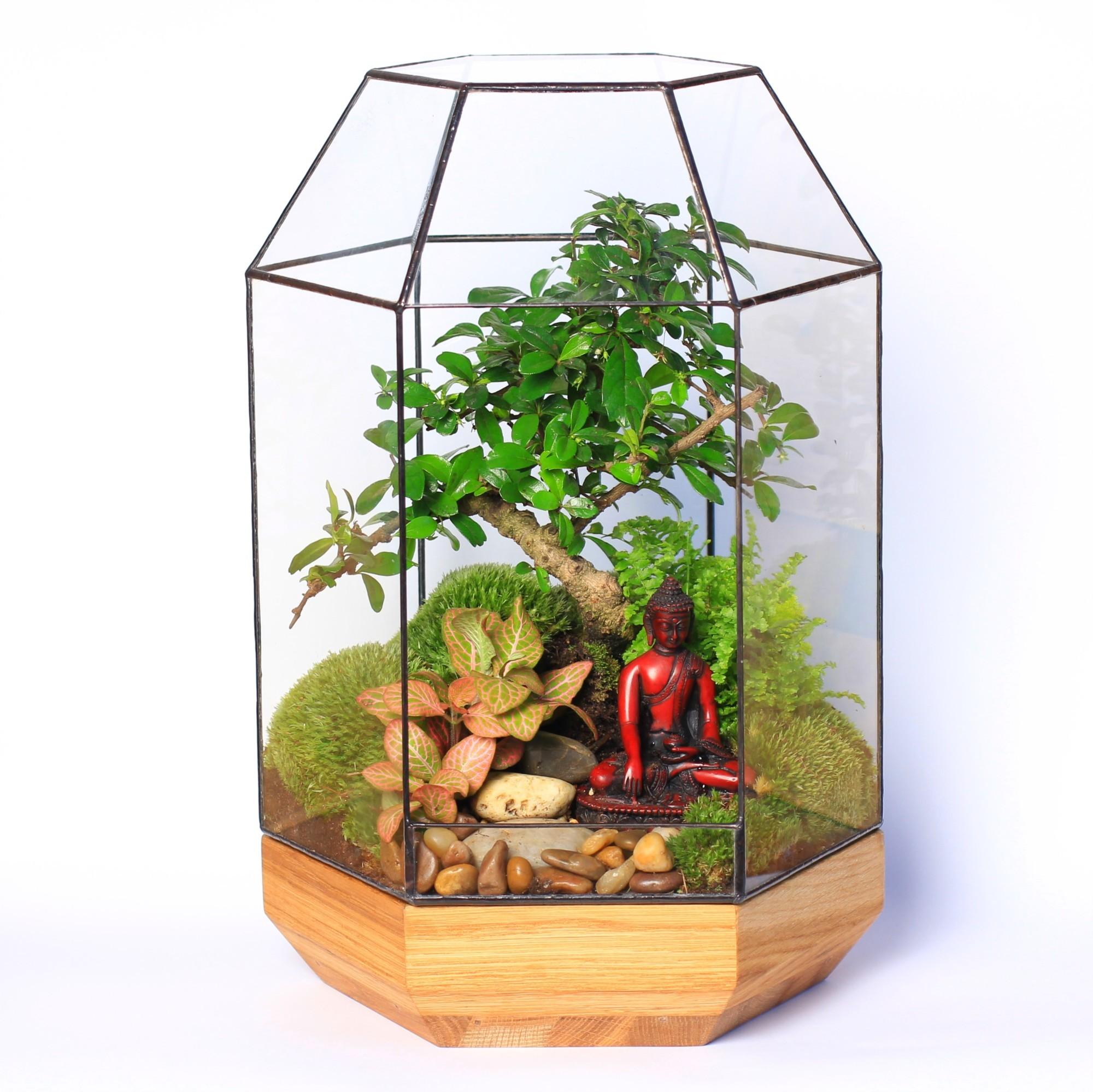Сад в стекле Умиротворение