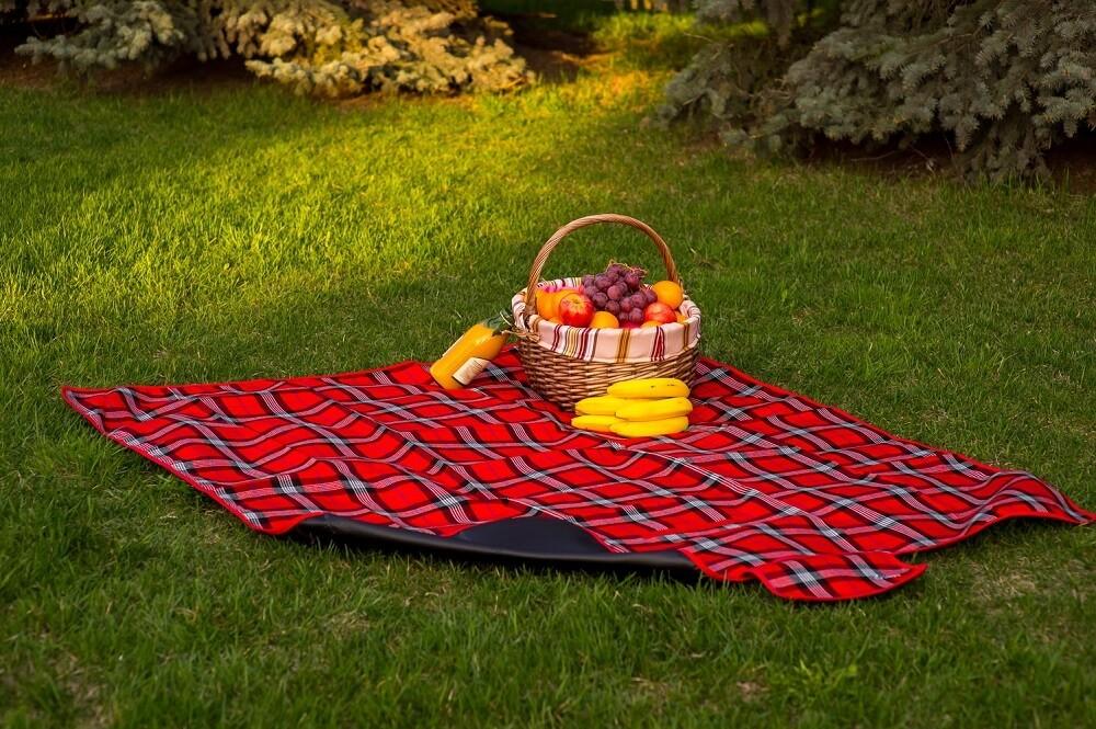 Непромокаемый плед для пикника Sleepy Picnic