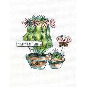 Набор для вышивания Mammillaria