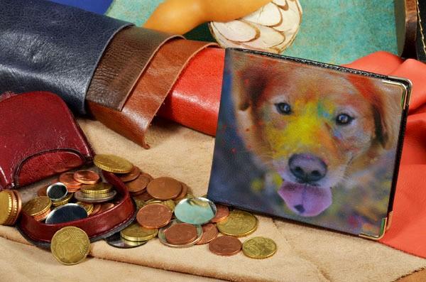 Портмоне с принтом Разноцветная собака