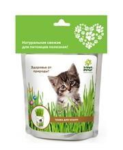 Трава для кошек Happy Plant