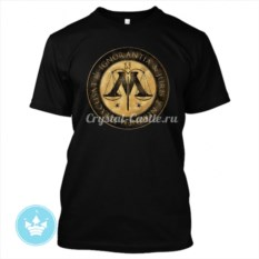 Мужская футболка Министерство магии