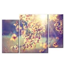 Модульная картина «Цветущая ветка в лучах солнца» 55×35 см