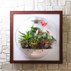 Флорариум Flandriss (без зеркала)
