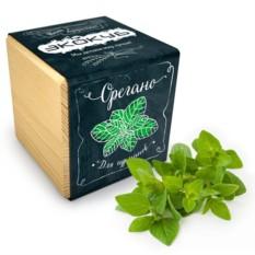 Набор для выращивания орегано Ecocube Black