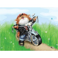 Картина по номерам «Котоциклист» Алексея Долотова