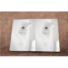 Кожаная обложка  Белый кот