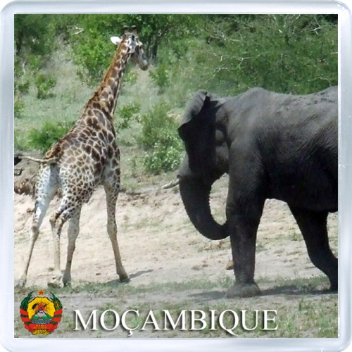 Магнит на холодильник: Мозамбик. Африканский слон