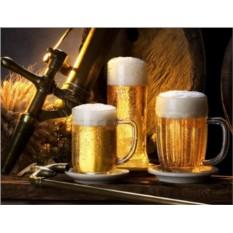 Подарочный сертификат Экскурсия на пивоварню для двоих