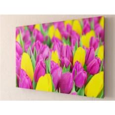 Фотокартина Сиреневые тюльпаны