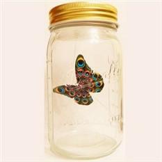 Электронная бабочка в банке Павлин