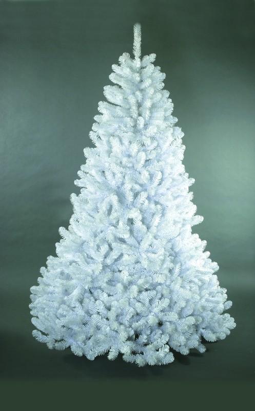 Сосна Стерлинг, белая, 1,37 м