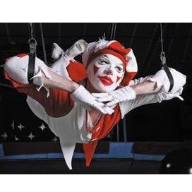 Сертификат Цирк танцующих фонтанов для двоих