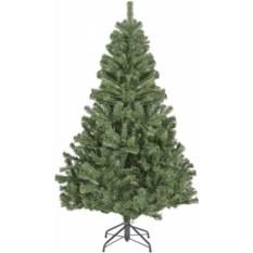 Елка Nord Pine