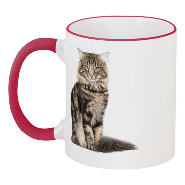 Кружка с цветной ручкой и ободком Милый пушистый кот
