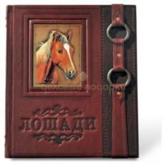 Подарочная книга Лошади. Новая энциклопедия