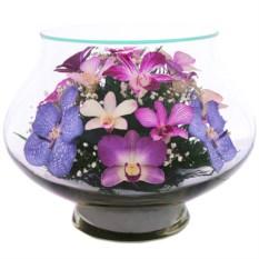 Цветы в стекле Композиция из натуральных орхидей