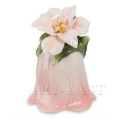 Колокольчик Райский цветок Pavone (светло-розовый)