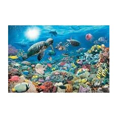 Пазл Морские обитатели