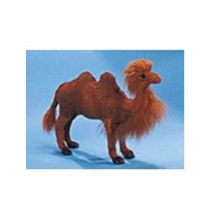 Модель «Верблюд»