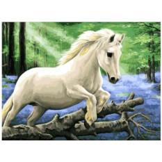 Картина по номерам «В лесу диких гиацинтов»