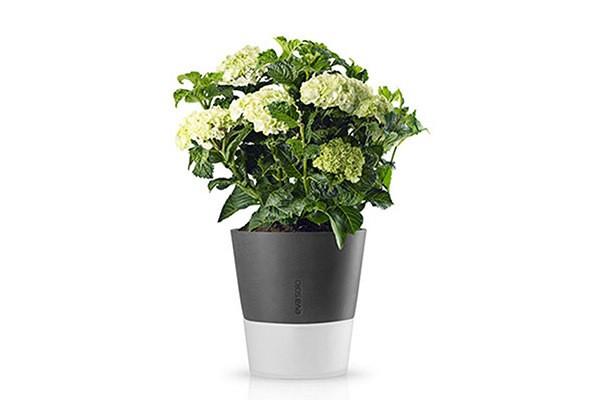 Серый горшок с естественным поливом Flowerpot