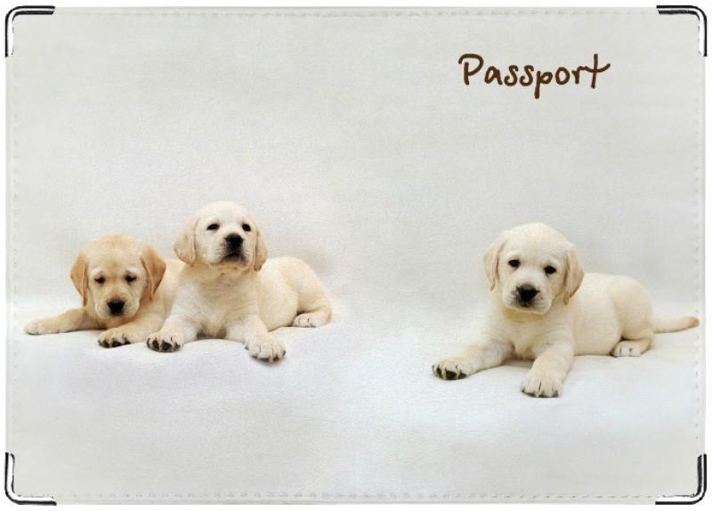 Обложка на паспорт Щенки