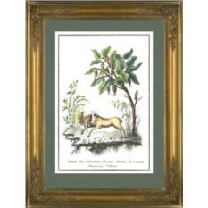 Картина Жак Шартон (J. Charton) Хлебное дерево и канадский лось
