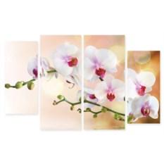 Модульная картина Орхидеи на воде