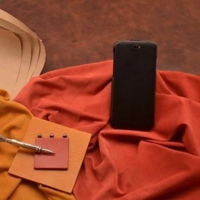 Кожаный чехол-книжка для iPhone 6S/6 «Ночной хищник»
