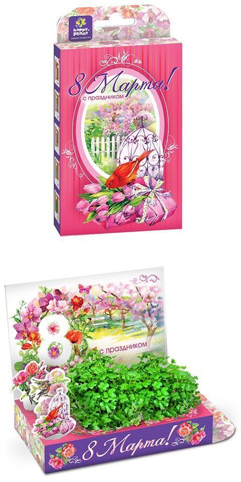 Подарочный набор Живая открытка 8 марта! Тюльпаны