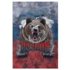 Обложка для паспорта Русский медведь