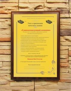 Подарочный диплом (плакетка) Главнокомандующий компании