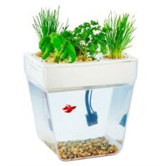 Набор для выращивания растений и ухода за рыбкой