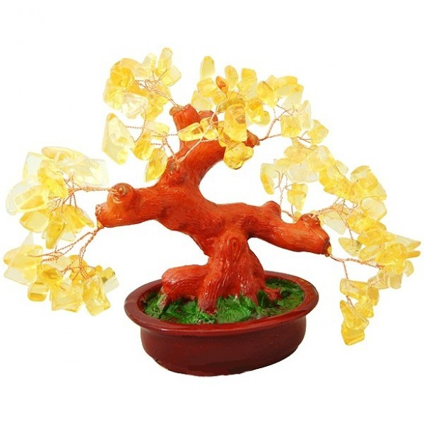 Бонсай Цитрин 20 см - дерево счастья