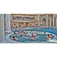 Сертификат на посещение аквапарка и банного комплекса